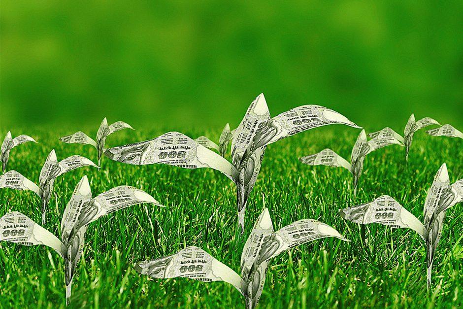 Nachhaltige Geldanlagen werden populär